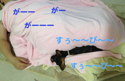 20130322-8.png