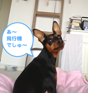 20130326-1.png