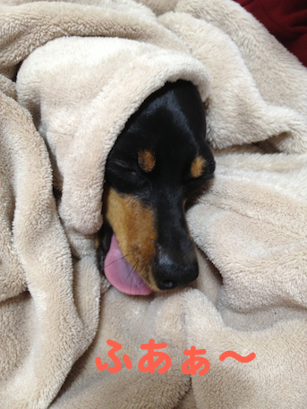 20130326-3.png