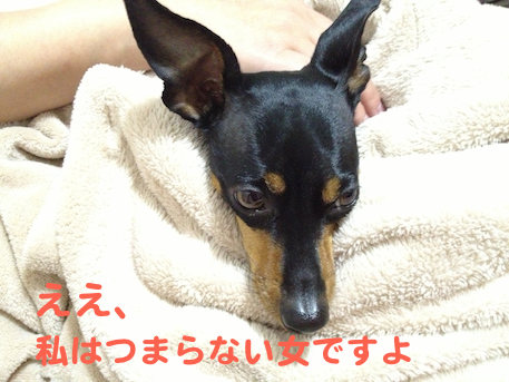 20130326-4.png