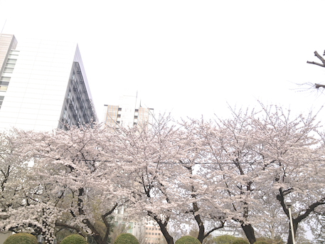 20130330-1.png