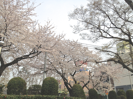 20130330-3.png