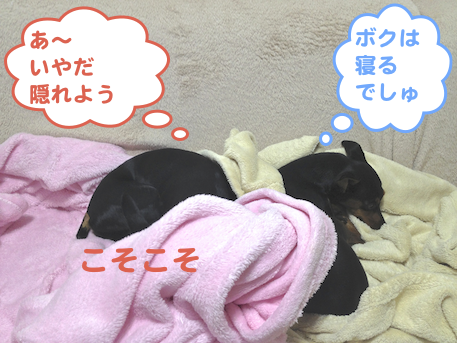 20130330-5.png