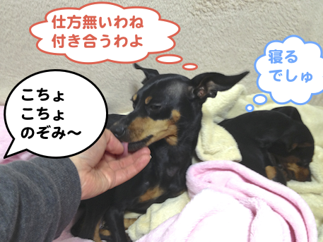 20130330-6.png