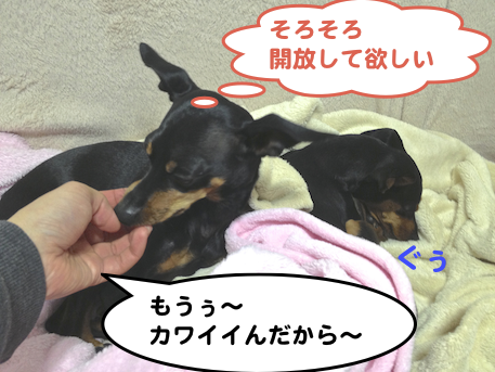 20130330-7.png