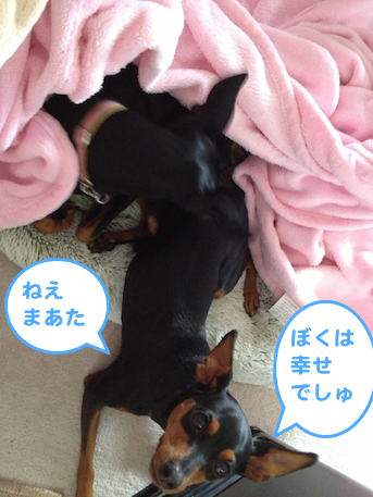 20130402-2.png