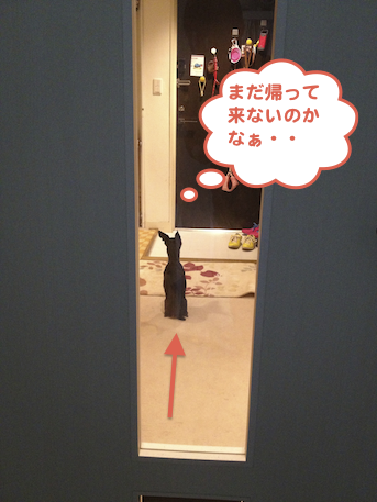 20130402-5.png