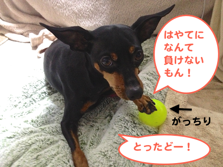 20130404.png