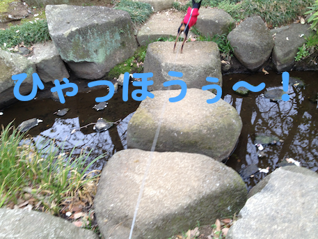20130405-10.png