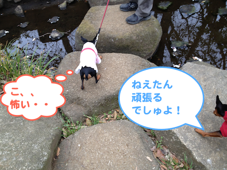 20130405-2.png