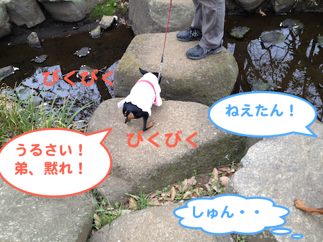 20130405-3.png