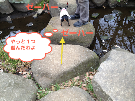 20130405-4.png
