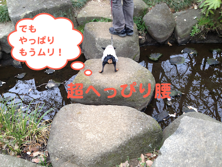 20130405-5.png
