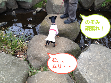 20130405.png