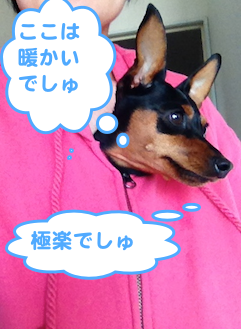 20130408-2.png