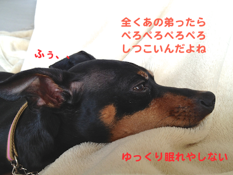 20130409-3.png