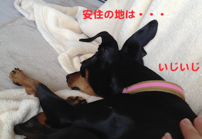 20130409-4.png