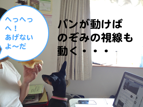 20130411-1.png
