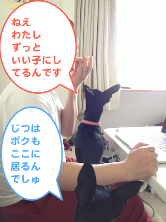 20130411-2.png