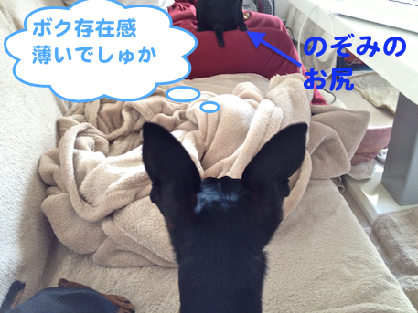 20130411-3.png