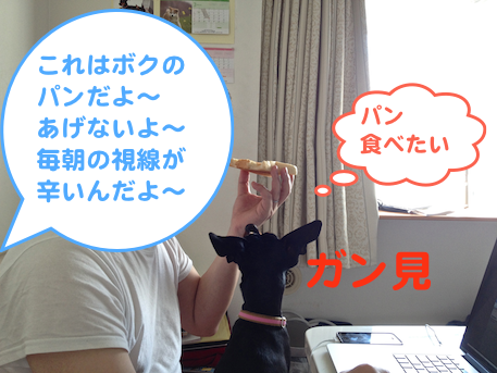 20130411.png