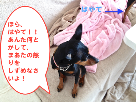 20130412-3.png