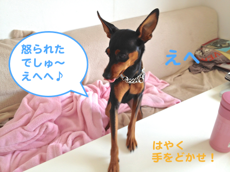 20130412-5.png