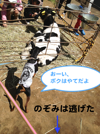 20130413-5.png