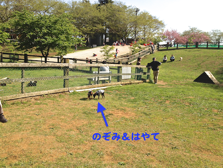 20130414-8.png