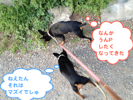 20130419-1.png