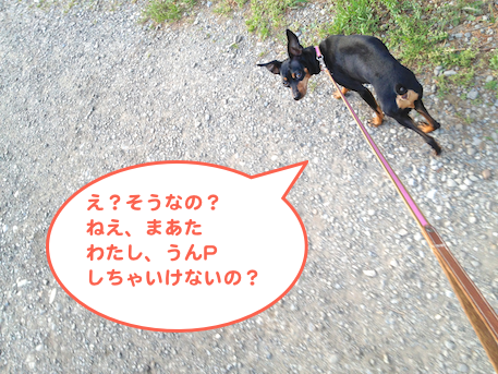 20130419-2.png