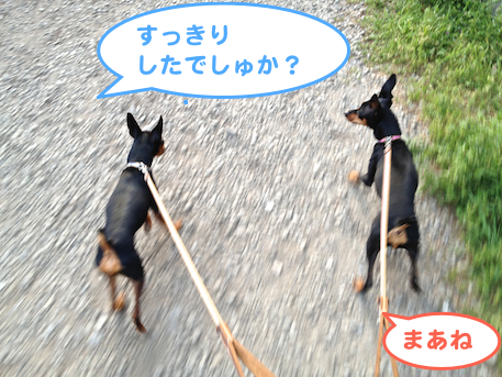 20130419-5.png