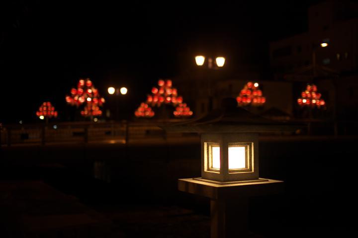 金魚ちょうちん灯燈る