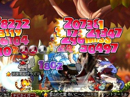 Maple120923_152729.jpg