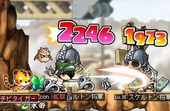 Maple120929_220423.jpg