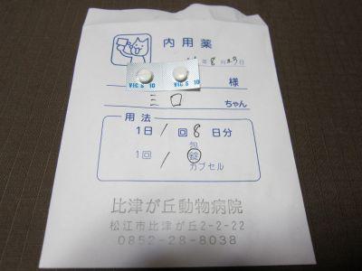 IMG_7424_400.jpg