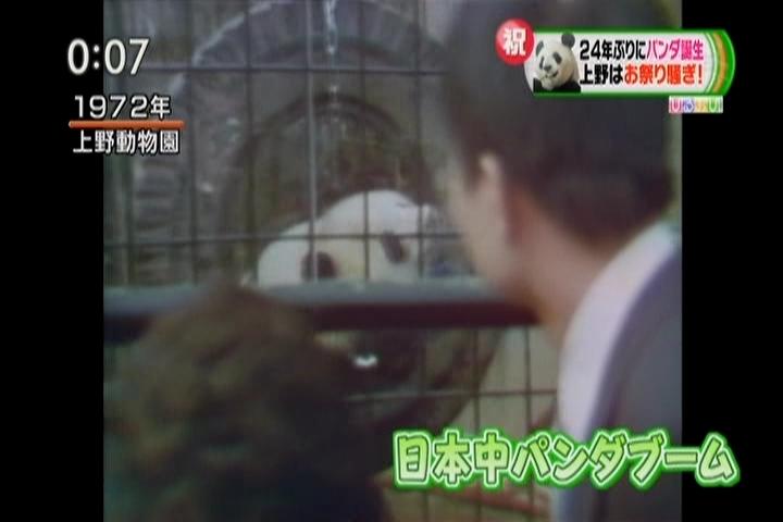 1972年、上野動物園のパンダブーム