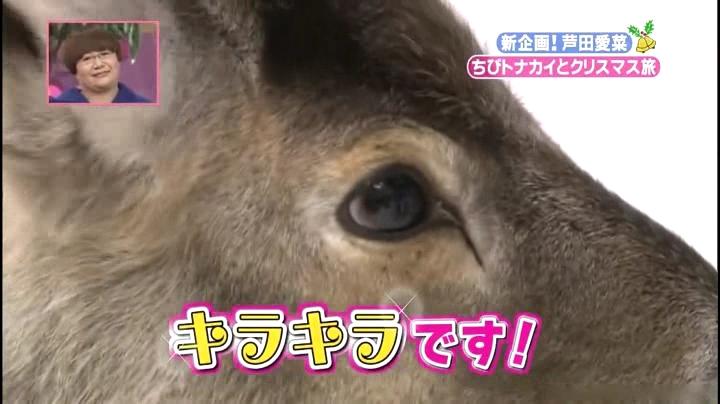 芦田愛菜ちゃん【天才!志村動物園】に登場!「黒目が大きい…キラキラです」 (2)