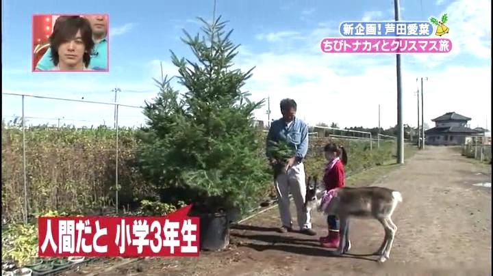 芦田愛菜ちゃん【天才!志村動物園】に登場!人間で言うなら10歳で、小学3年