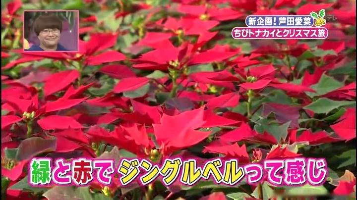 芦田愛菜ちゃん【天才!志村動物園】に登場!「緑と赤でジングルベルって感じ」