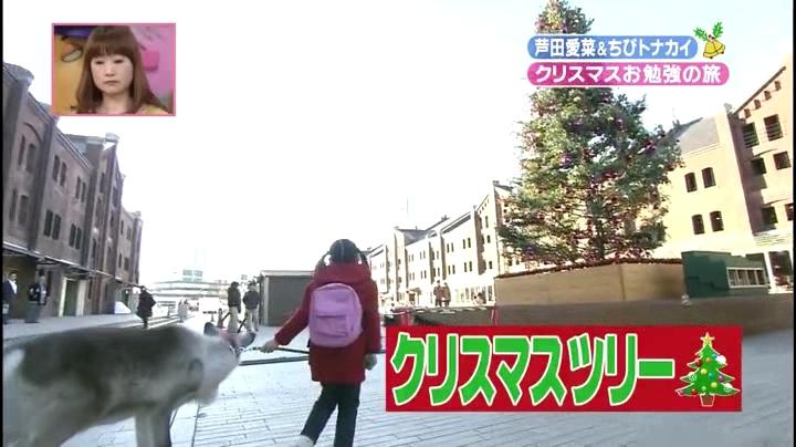 芦田愛菜ちゃん【天才!志村動物園】に登場!第3章、巨大なクリスマスツリー2
