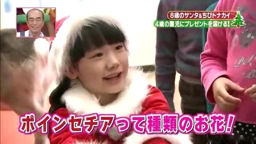 芦田愛菜ちゃん【天才!志村動物園】に登場!最終(4)章、ポインセチアを教える愛菜ちゃん