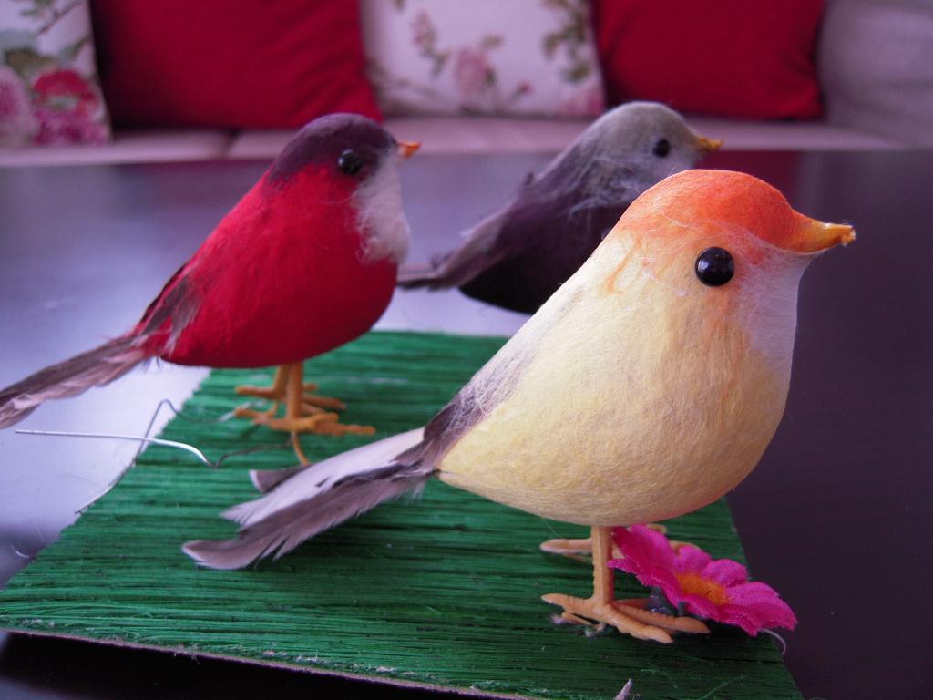 3coins☆ 小鳥3羽☆2