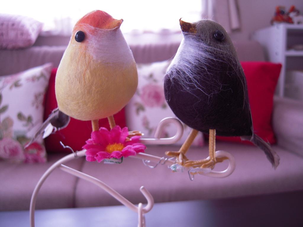 3coins☆ 小鳥3羽☆3