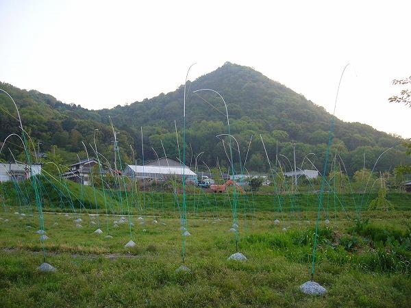 山条山と屋外造形展示H25.4