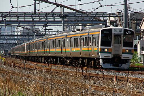 IMGP5965.jpg