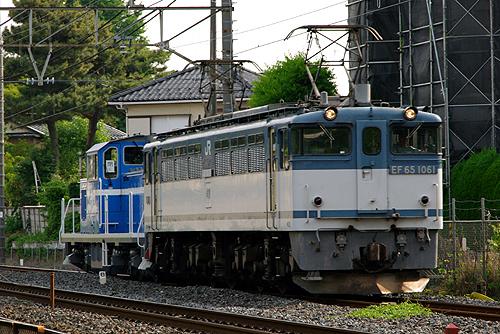 IMGP6630.jpg