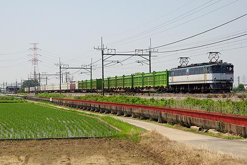 IMGP6691.jpg