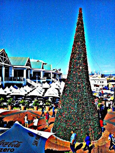 WF_Christmas2012_01.jpg