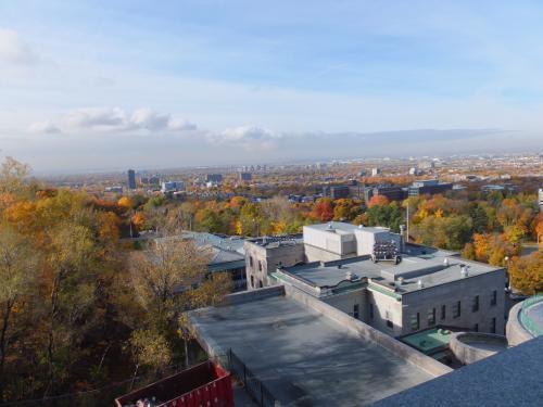 2012-1102-10.jpg